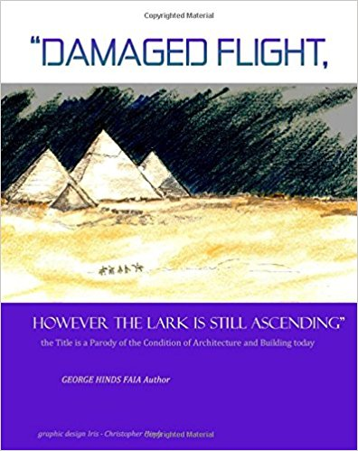 DAMAGED FLIGHT