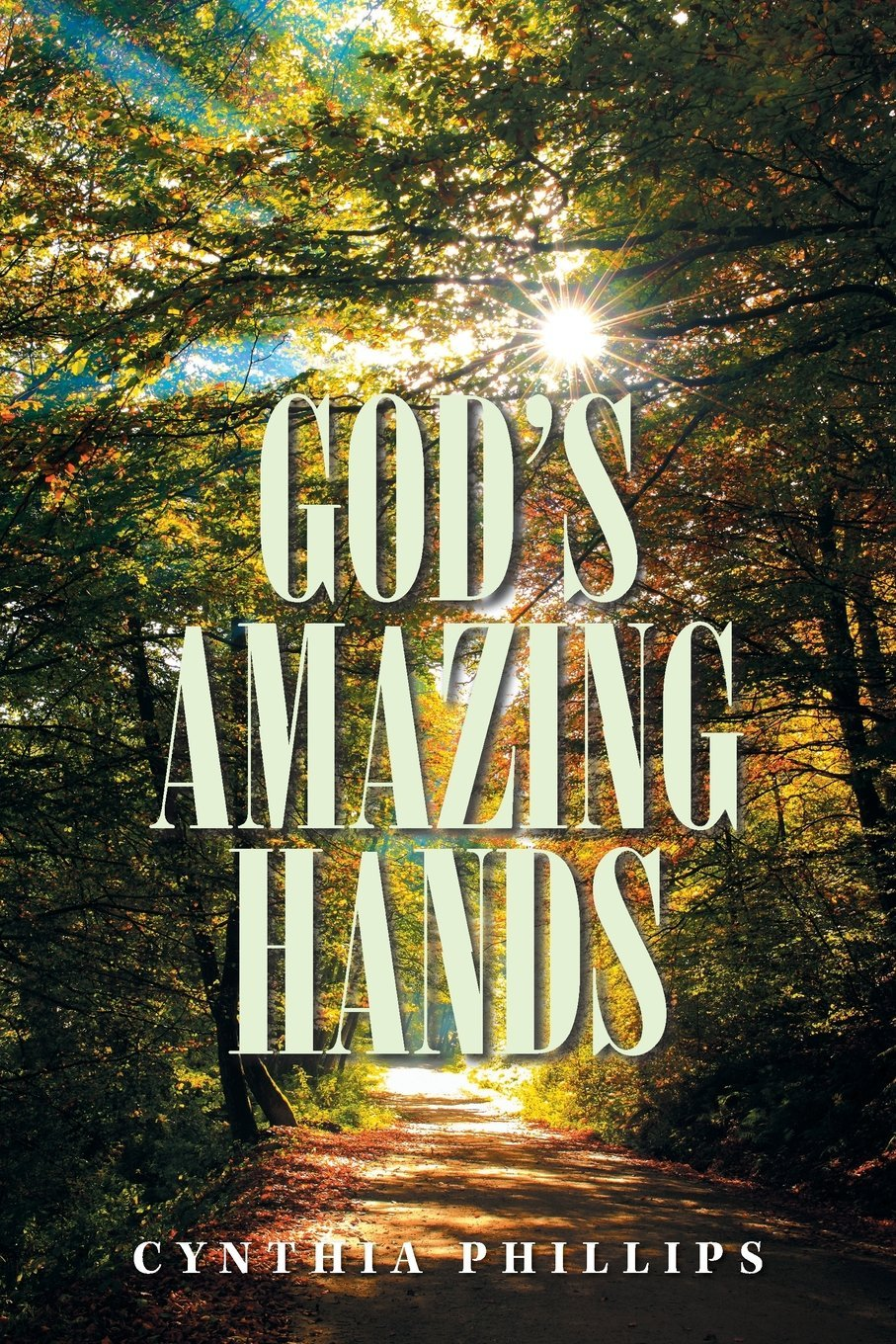 GOD'S AMAZING HANDS