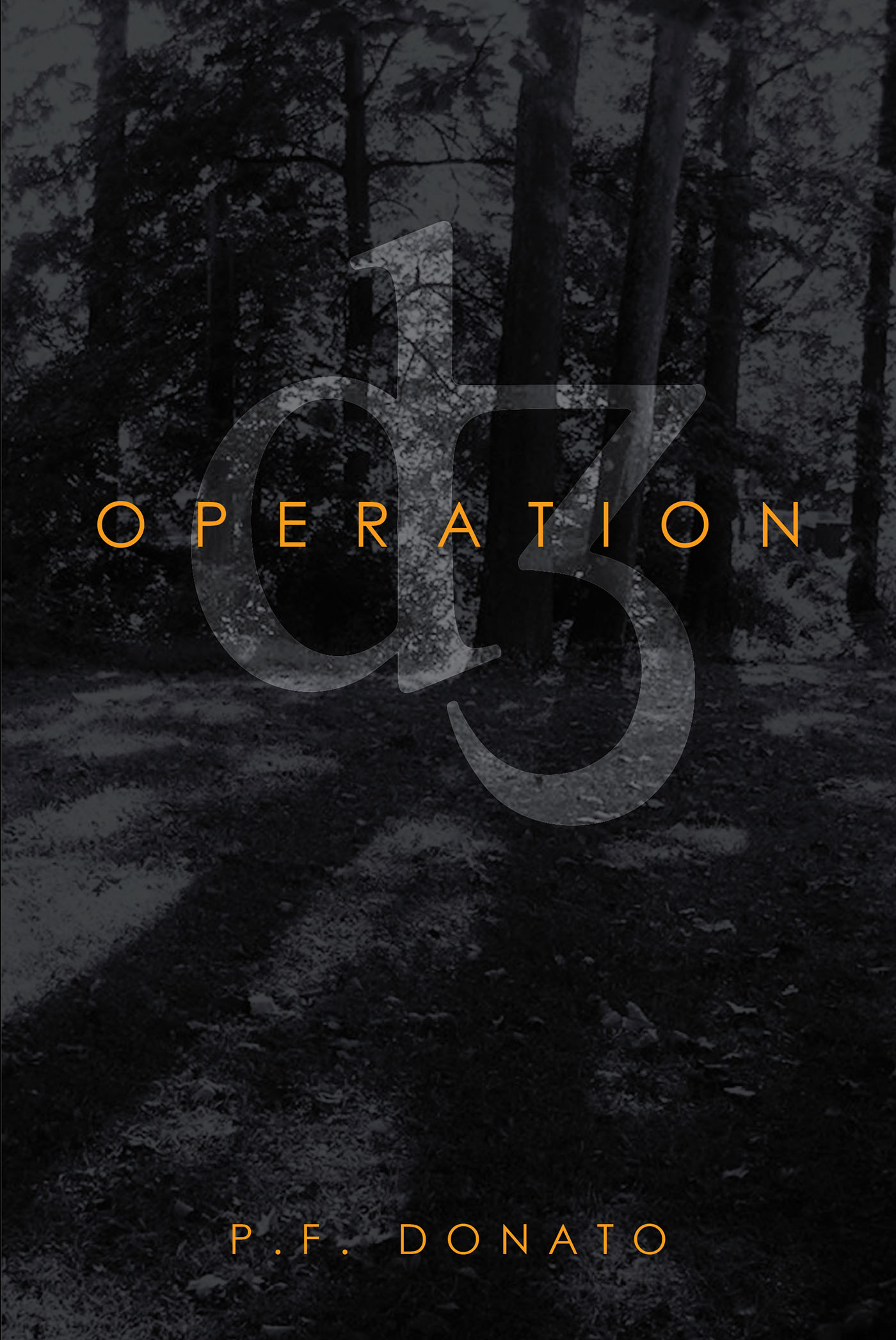 Operation D3