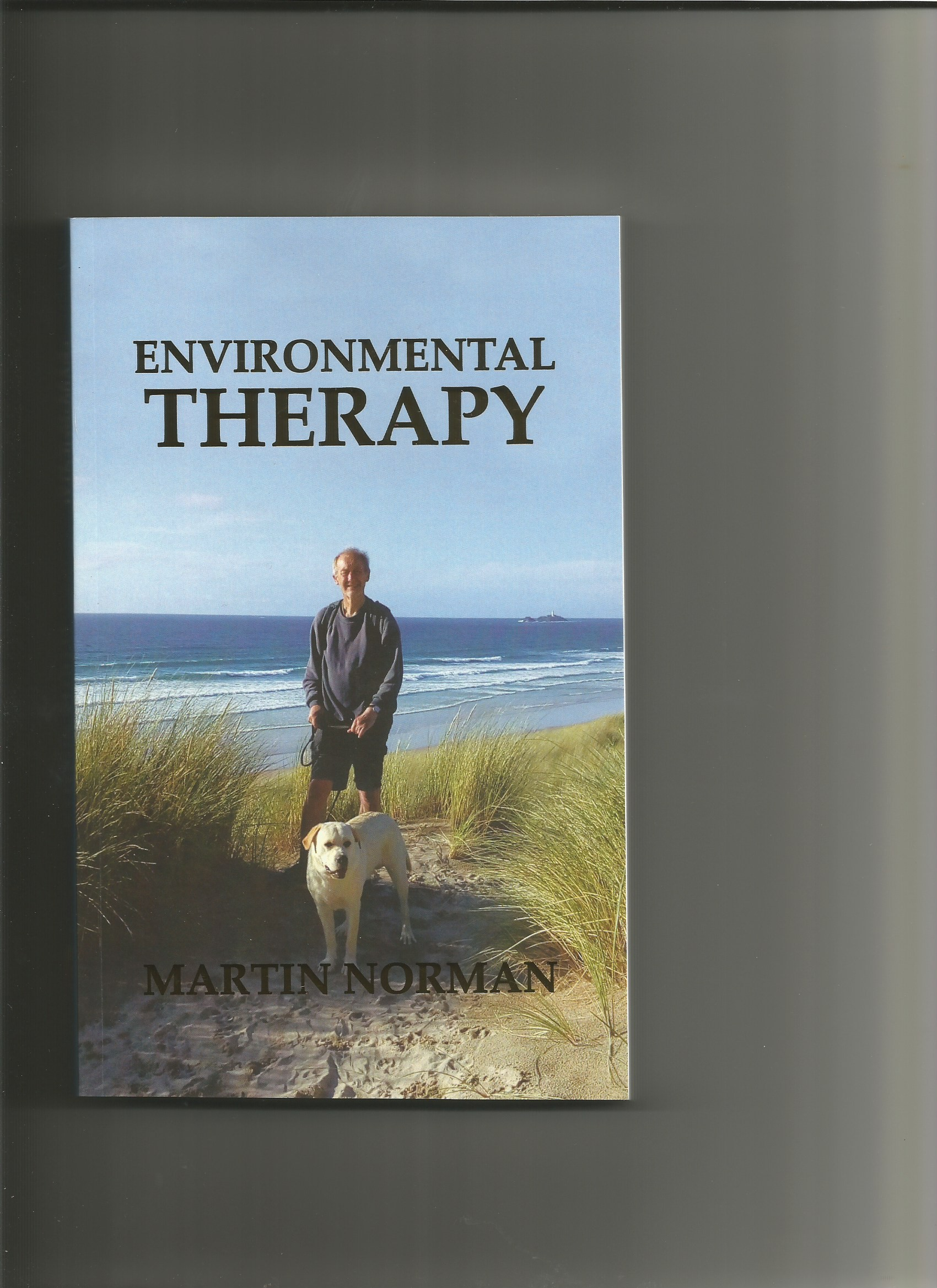 Environmental Therapy