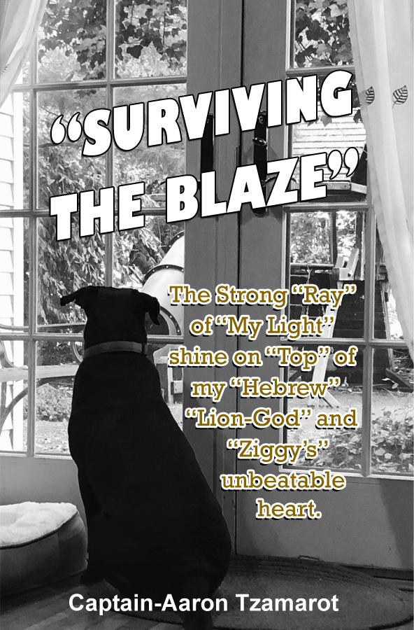SURVIVING THE BLAZE