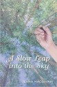A Slow Leap into the Sky