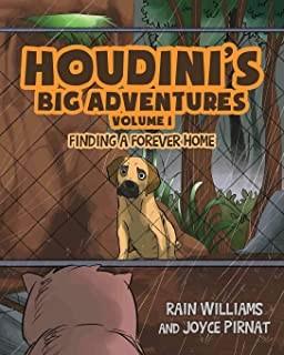 Houdini's Big Adventure