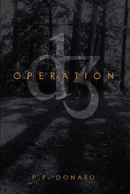 Operation D3