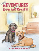 THE ADVENTURES OF BRYN AND CRYSTAL