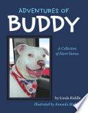 Adventures of Buddy