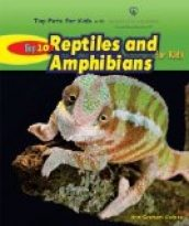 Top 10 Reptiles and Amphibians for Kids