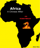 Africa. A chinese affair