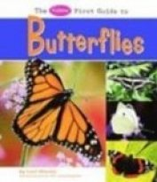 Pebble First Guide to Butterflies