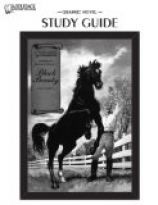 Black Beauty-Illustrated Classics-Guide