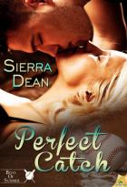Perfect Catch: Boys of Summer, Book 2