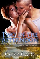 Two in the Afternoon: A Day of Pleasure, Book 2