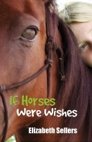 If Horses Were Wishes
