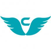 Codeflies Technologies Pvt. Ltd.