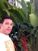 ayman Saad