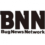 Bnn Inc